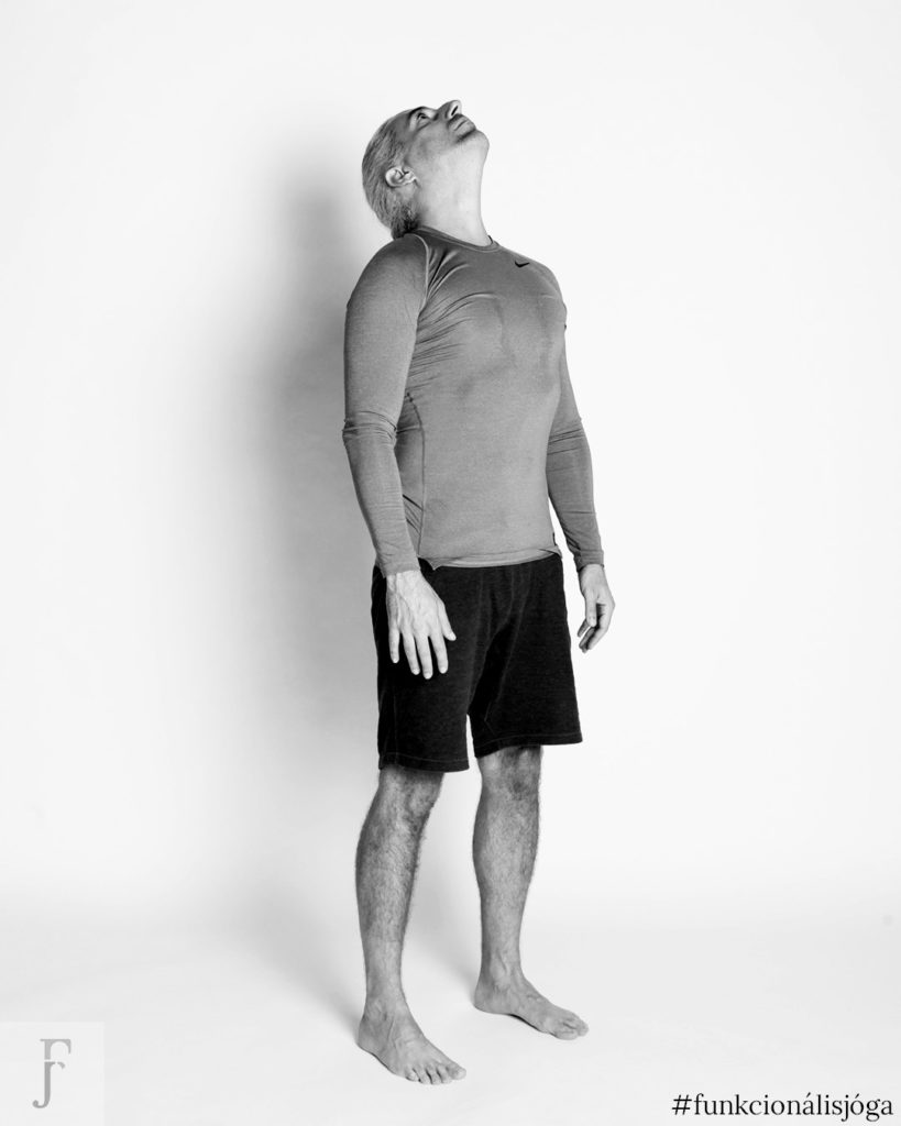 állva nyaki előre hátra hajtás gerincgyakorlat nyakfájásra nyaki gerinctorna nyaki fájdalom nyakgyakorlat jóga gyakorlat nyakfájásra 1
